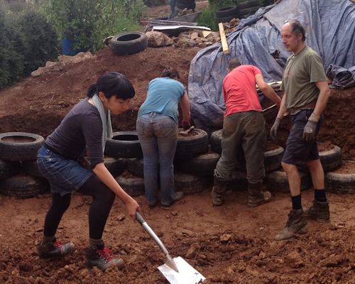 Starting a community garden in Totnes